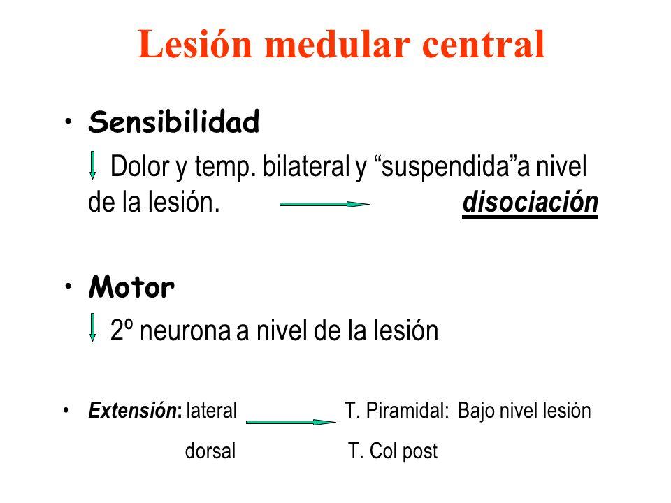 Lesión medular central Sensibilidad Dolor y temp. bilateral y suspendidaa nivel de la lesión. disociación Motor 2º neurona a nivel de la lesión Extens