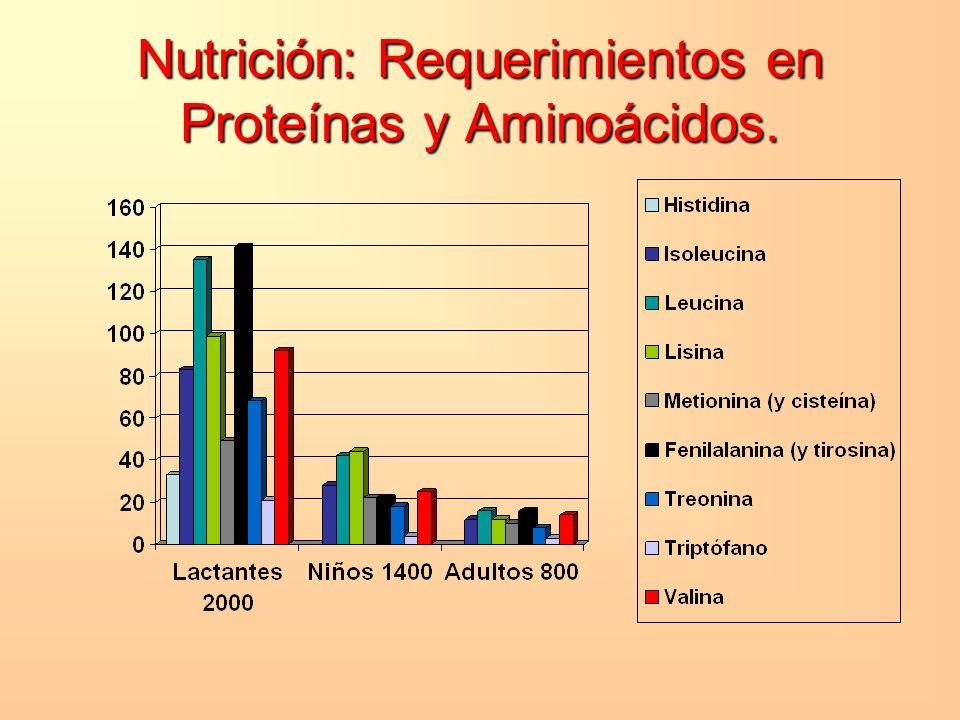 Nutrición: Requerimientos en Proteínas y Aminoácidos.