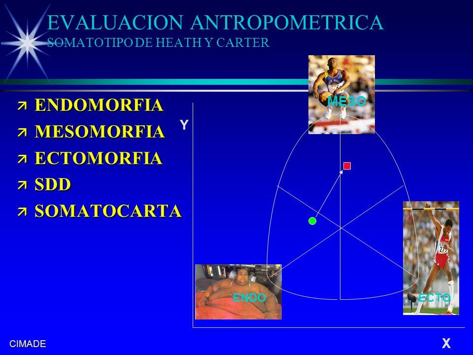 CIMADE ESTUDIO DEL SOMATOTIPO ä ENDOMORFIA: es la adiposidad relativa del sujeto en relación a la talla ä MESOMORFIA: es la robustez músculo- esquelética relativa a la talla ä ECTOMORFIA: es la linealiadad relativa del sujeto.