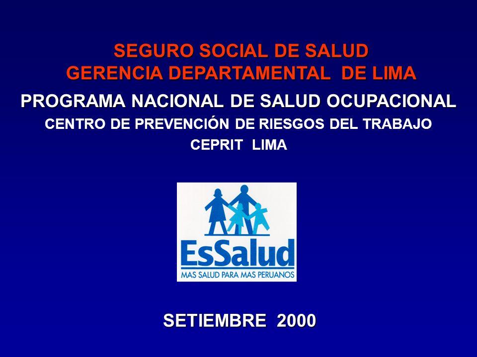 SEGURO SOCIAL DE SALUD GERENCIA DEPARTAMENTAL DE LIMA PROGRAMA NACIONAL DE SALUD OCUPACIONAL CENTRO DE PREVENCIÓN DE RIESGOS DEL TRABAJO CEPRIT LIMA SETIEMBRE 2000