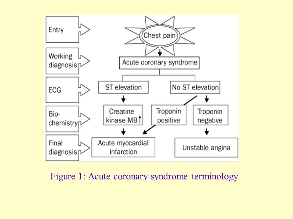 Figure 1: Acute coronary syndrome terminology