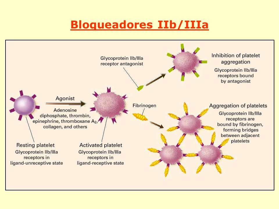 Bloqueadores IIb/IIIa