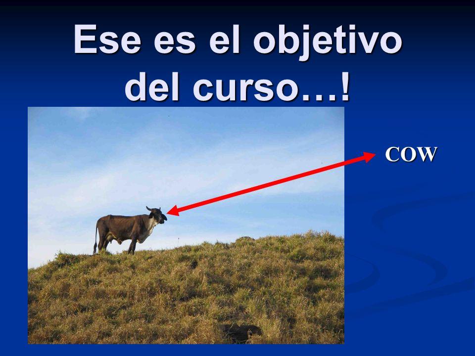 Ese es el objetivo del curso…! COW