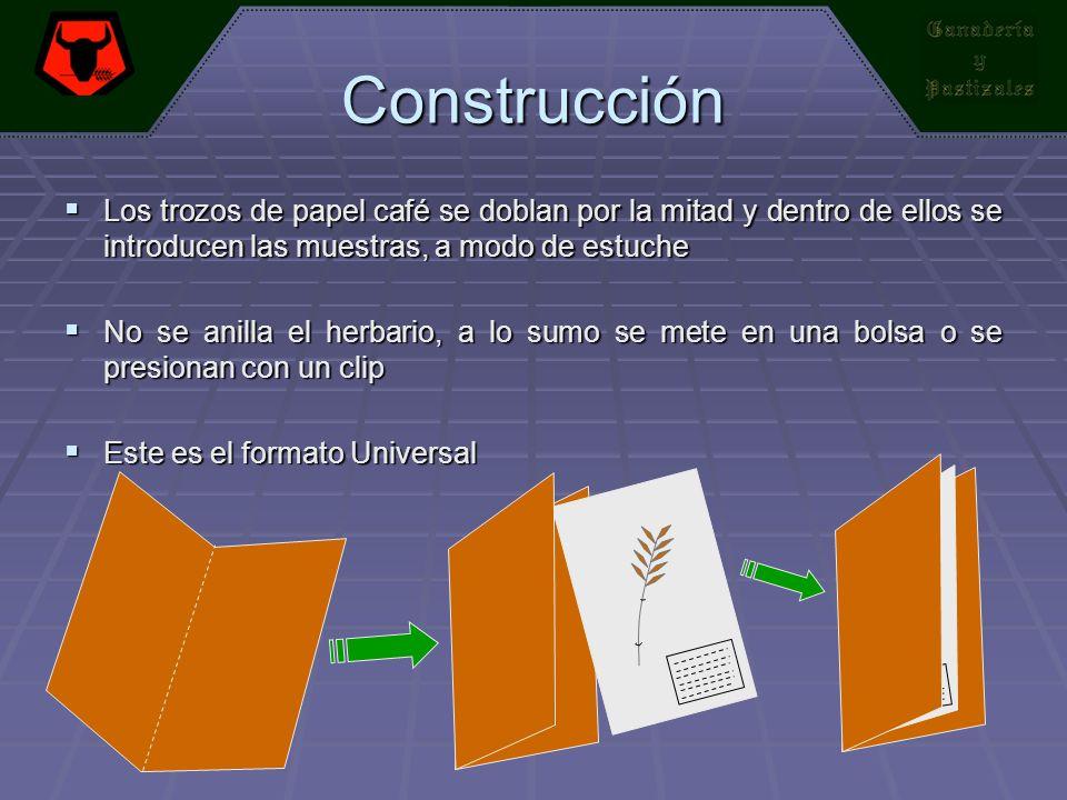 Construcción Los trozos de papel café se doblan por la mitad y dentro de ellos se introducen las muestras, a modo de estuche Los trozos de papel café
