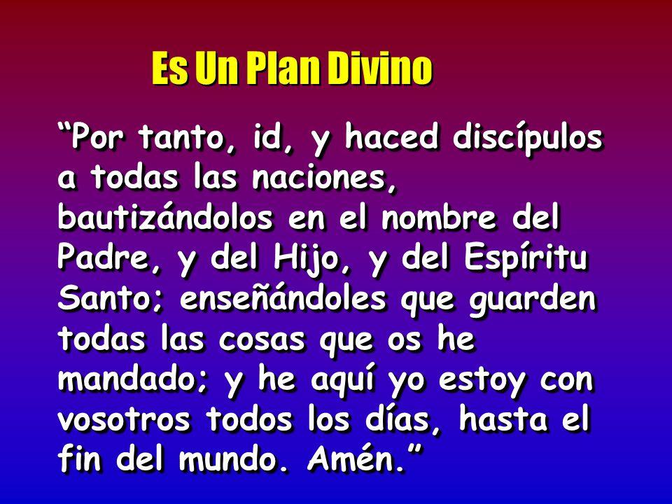 Es Un Plan Divino Por tanto, id, y haced discípulos a todas las naciones, bautizándolos en el nombre del Padre, y del Hijo, y del Espíritu Santo; ense