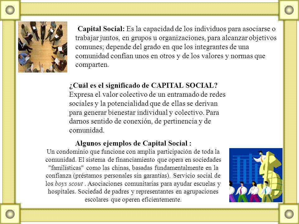 Capital Social: Es la capacidad de los individuos para asociarse o trabajar juntos, en grupos u organizaciones, para alcanzar objetivos comunes; depende del grado en que los integrantes de una comunidad confían unos en otros y de los valores y normas que comparten.
