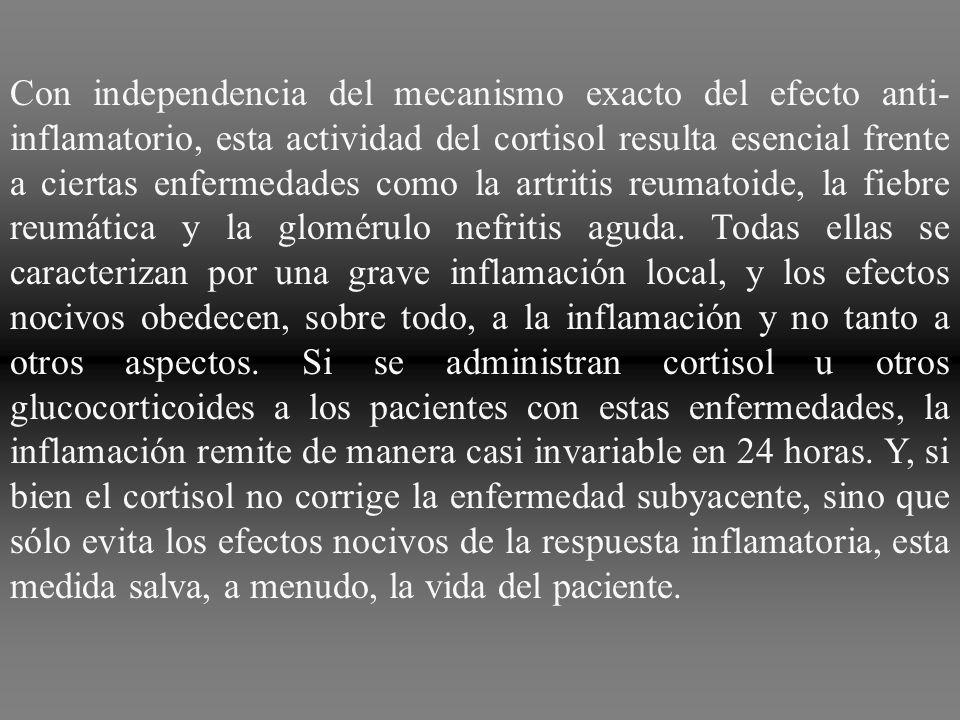 Incluso después de establecida la inflamación, la administración de cortisol puede reducirla en un plazo de horas a días. De inmediato, bloquea casi t