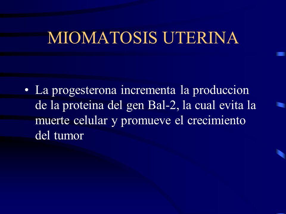 MIOMATOSIS UTERINA La progesterona incrementa la produccion de la proteina del gen Bal-2, la cual evita la muerte celular y promueve el crecimiento de