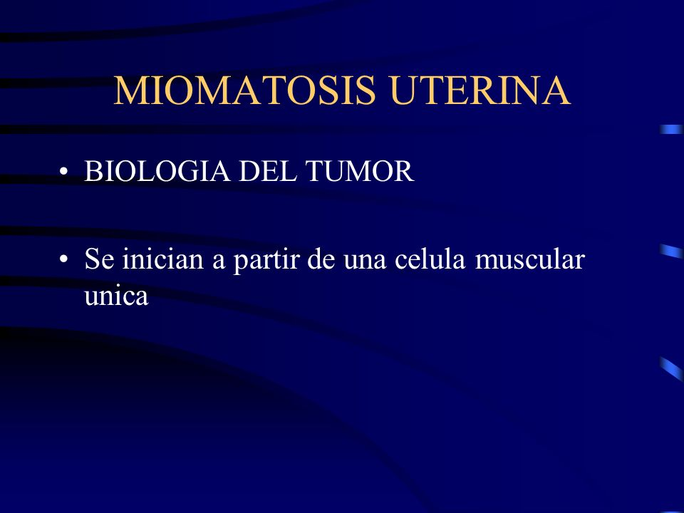 MIOMATOSIS UTERINA BIOLOGIA DEL TUMOR Se inician a partir de una celula muscular unica