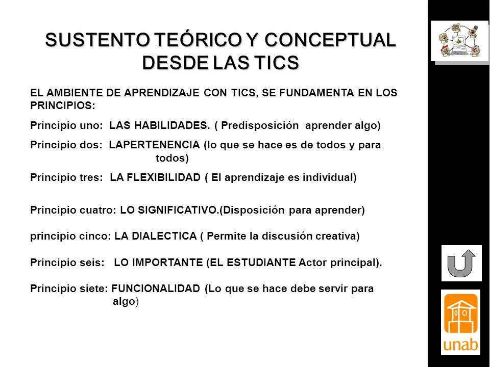 SUSTENTO TEÓRICO Y CONCEPTUAL DESDE LAS TICS EL AMBIENTE DE APRENDIZAJE CON TICS, SE FUNDAMENTA EN LOS PRINCIPIOS: Principio uno: LAS HABILIDADES. ( P