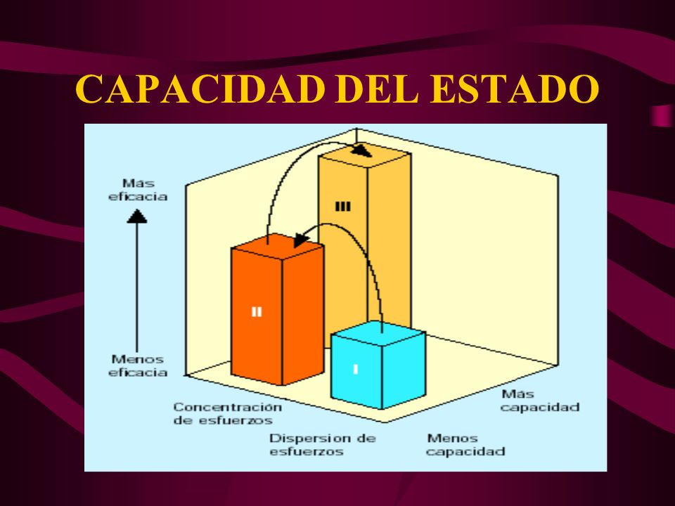 CAPACIDAD DEL ESTADO