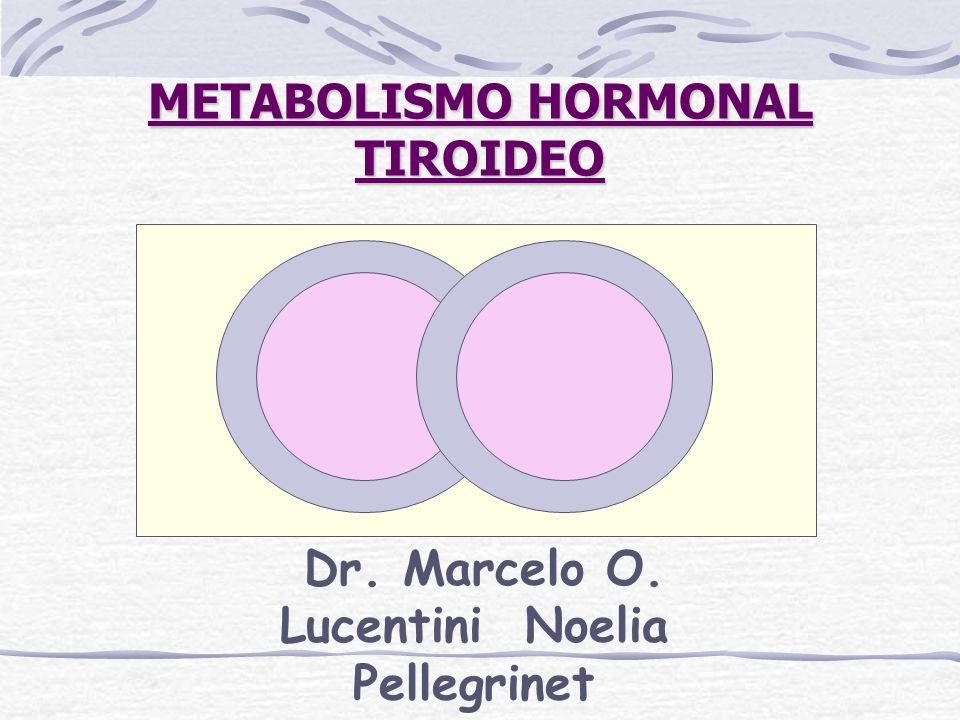 METABOLISMO HORMONAL TIROIDEO Dr. Marcelo O. Lucentini Noelia Pellegrinet