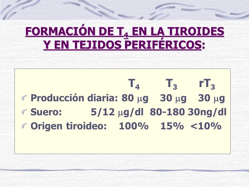 FORMACIÓN DE T 4 EN LA TIROIDES Y EN TEJIDOS PERIFÉRICOS: T 4 T 3 rT 3 Producción diaria: 80 g 30 g 30 g Suero: 5/12 g/dl 80-180 30ng/dl Origen tiroid