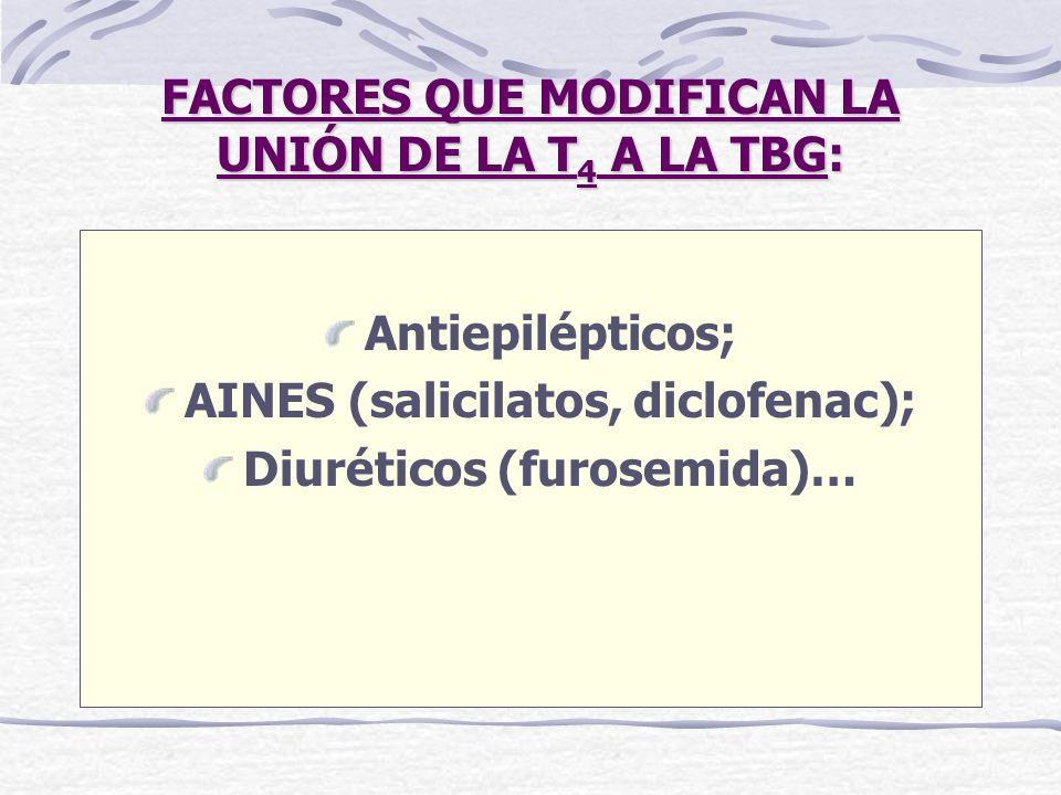 FACTORES QUE MODIFICAN LA UNIÓN DE LA T 4 A LA TBG: Antiepilépticos; AINES (salicilatos, diclofenac); Diuréticos (furosemida)…