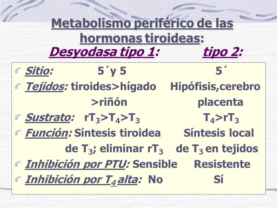Desyodasa tipo 1: tipo 2: Sitio: 5´y 5 5´ Tejidos: tiroides>hígado Hipófisis,cerebro >riñón placenta Sustrato: rT 3 >T 4 >T 3 T 4 >rT 3 Función: Sínte