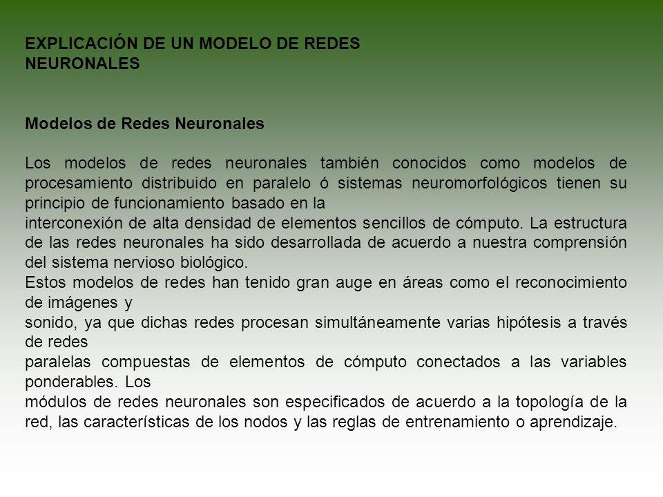 EXPLICACIÓN DE UN MODELO DE REDES NEURONALES Modelos de Redes Neuronales Los modelos de redes neuronales también conocidos como modelos de procesamien