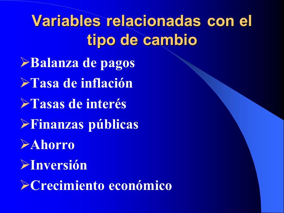 Variables relacionadas con el tipo de cambio Balanza de pagos Tasa de inflación Tasas de interés Finanzas públicas Ahorro Inversión Crecimiento económ