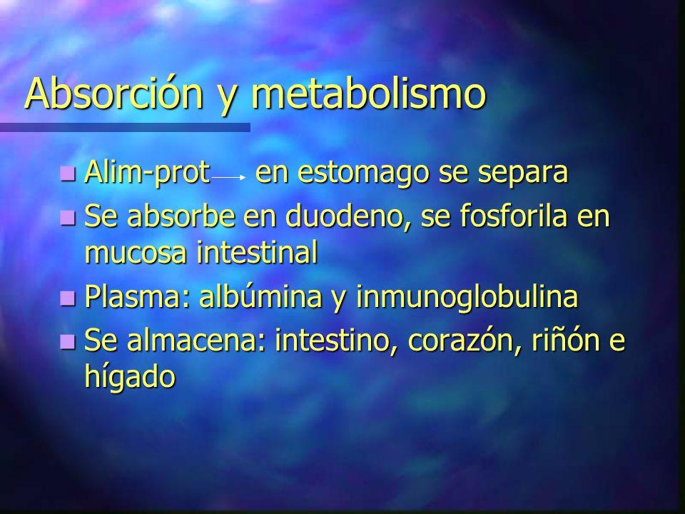 Absorción y metabolismo Alim-prot en estomago se separa Alim-prot en estomago se separa Se absorbe en duodeno, se fosforila en mucosa intestinal Se ab