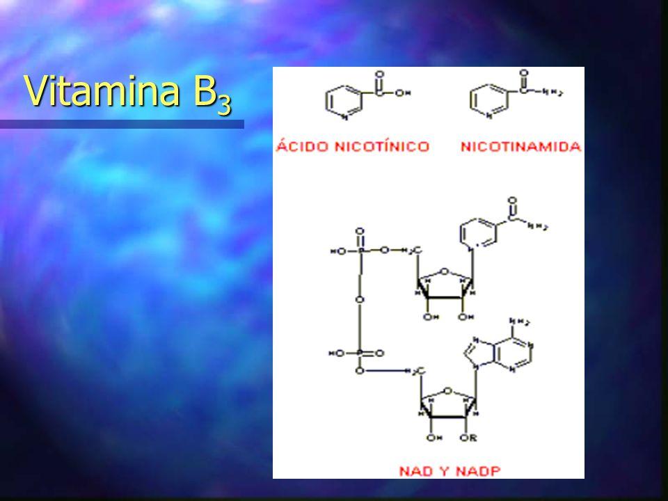 Vitamina B 3