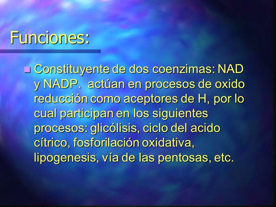 Funciones: Constituyente de dos coenzimas: NAD y NADP. actúan en procesos de oxido reducción como aceptores de H, por lo cual participan en los siguie