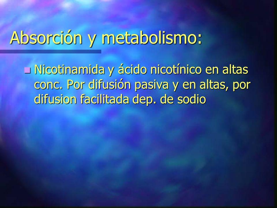 Absorción y metabolismo: Nicotinamida y ácido nicotínico en altas conc. Por difusión pasiva y en altas, por difusion facilitada dep. de sodio Nicotina