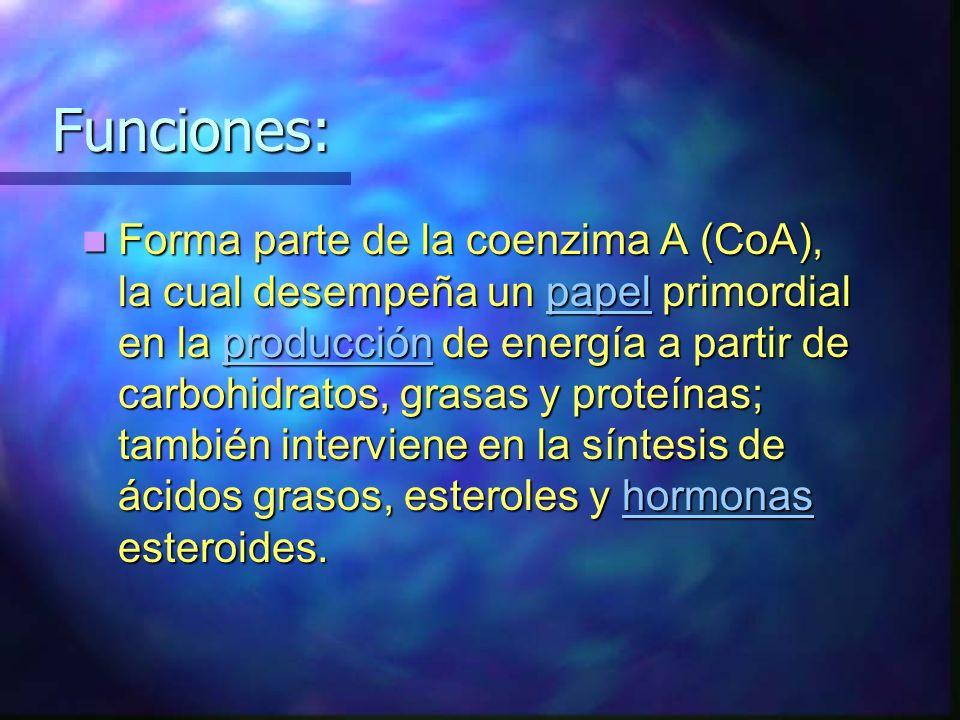 Funciones: Funciones: Forma parte de la coenzima A (CoA), la cual desempeña un papel primordial en la producción de energía a partir de carbohidratos,