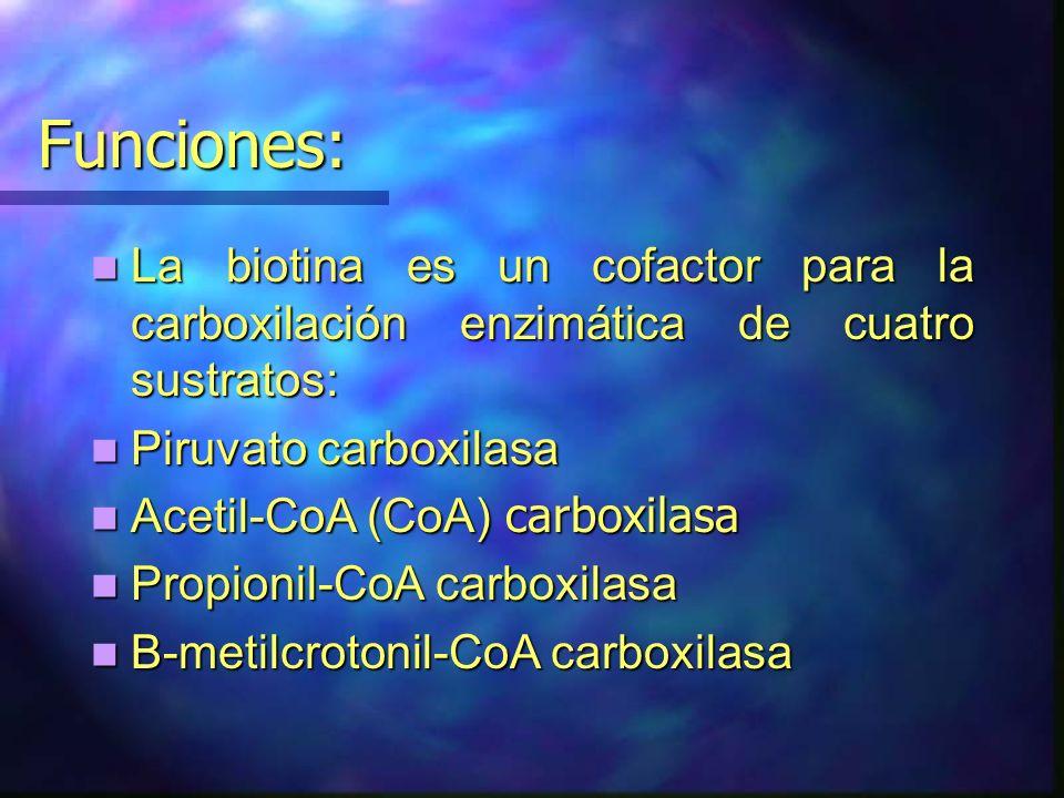 Funciones: La biotina es un cofactor para la carboxilación enzimática de cuatro sustratos: La biotina es un cofactor para la carboxilación enzimática