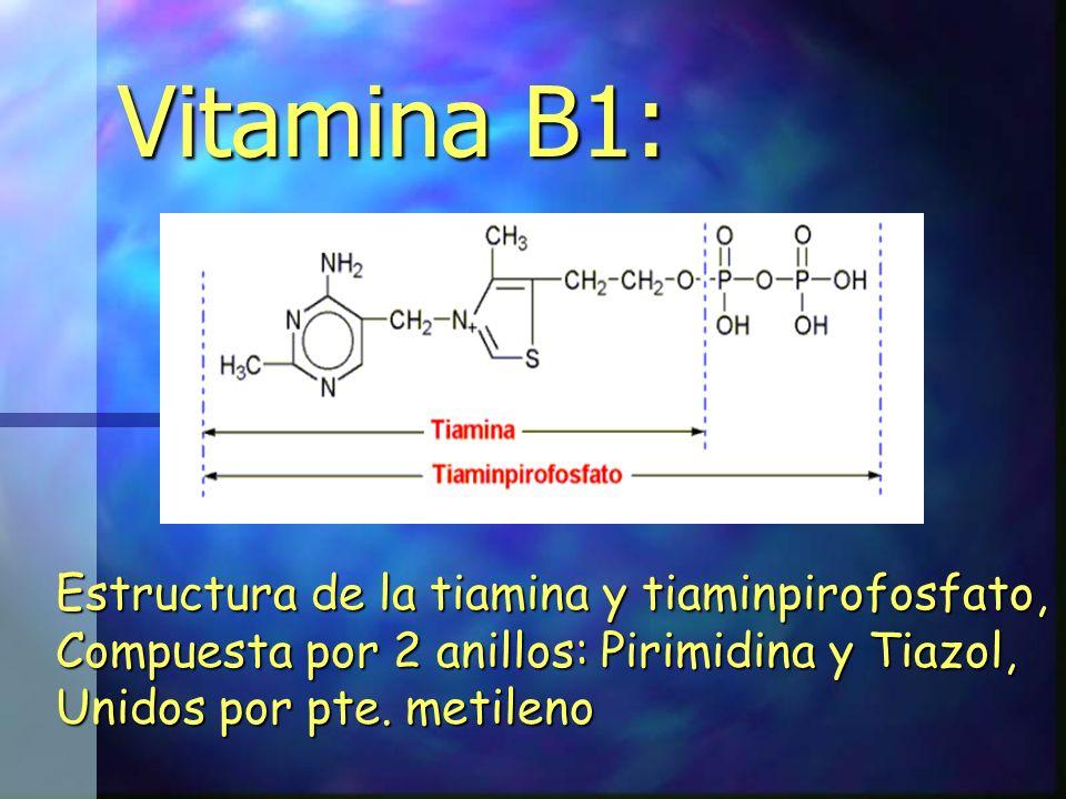 Vitamina B1: Estructura de la tiamina y tiaminpirofosfato, Compuesta por 2 anillos: Pirimidina y Tiazol, Unidos por pte. metileno