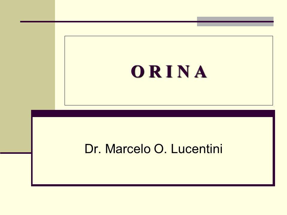 O R I N A Dr. Marcelo O. Lucentini