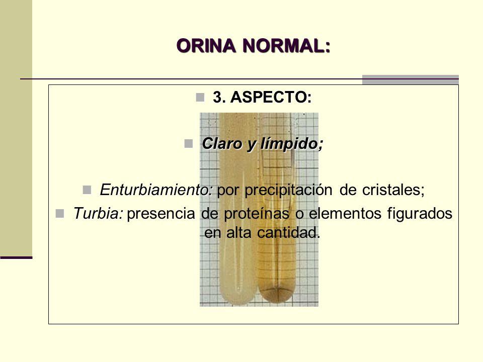 ORINA NORMAL: 3. ASPECTO: 3. ASPECTO: Claro y límpido; Claro y límpido; Enturbiamiento: Enturbiamiento: por precipitación de cristales; Turbia: Turbia