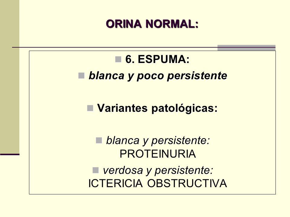ORINA NORMAL: 6. ESPUMA: 6. ESPUMA: blanca y poco persistente blanca y poco persistente Variantes patológicas: Variantes patológicas: blanca y persist