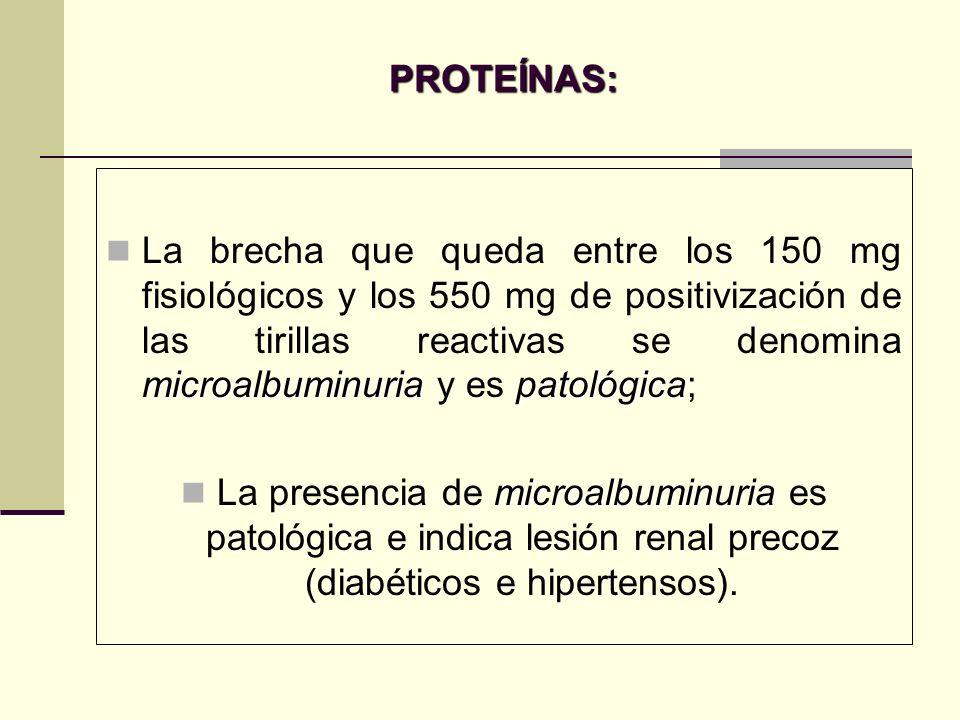 PROTEÍNAS: microalbuminuriapatológica La brecha que queda entre los 150 mg fisiológicos y los 550 mg de positivización de las tirillas reactivas se de
