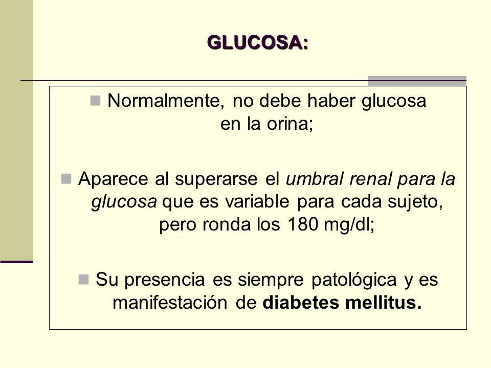 GLUCOSA: Normalmente, no debe haber glucosa en la orina; Aparece al superarse el umbral renal para la glucosa que es variable para cada sujeto, pero r