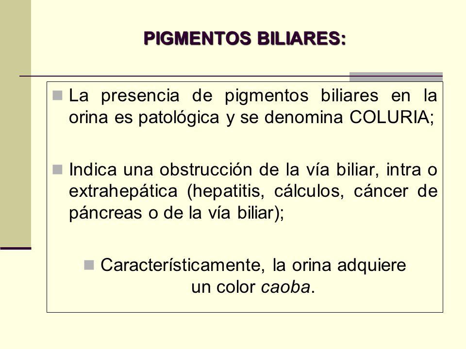 PIGMENTOS BILIARES: La presencia de pigmentos biliares en la orina es patológica y se denomina COLURIA; Indica una obstrucción de la vía biliar, intra