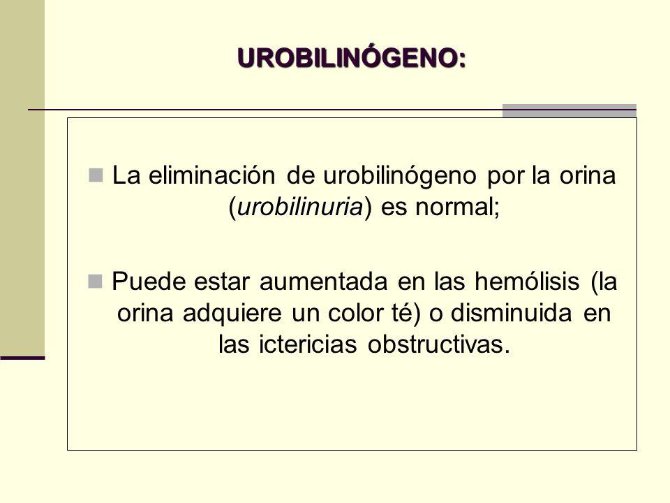 UROBILINÓGENO: urobilinuria La eliminación de urobilinógeno por la orina (urobilinuria) es normal; Puede estar aumentada en las hemólisis (la orina ad