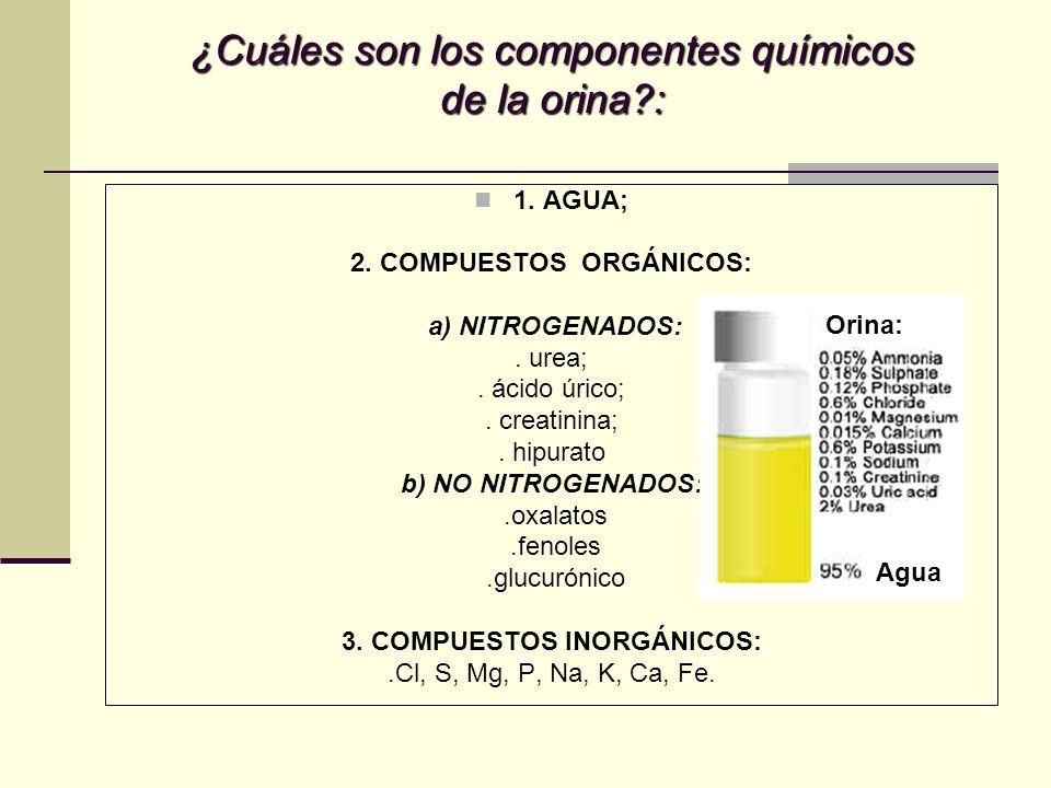 ¿Cuáles son los componentes químicos de la orina?: 1. AGUA; 2. COMPUESTOS ORGÁNICOS: a) NITROGENADOS:. urea;. ácido úrico;. creatinina;. hipurato b) N