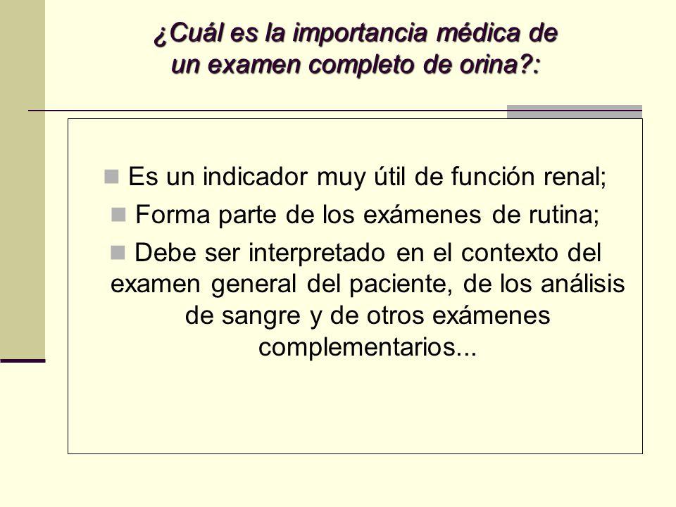 ¿Cuál es la importancia médica de un examen completo de orina?: Es un indicador muy útil de función renal; Forma parte de los exámenes de rutina; Debe