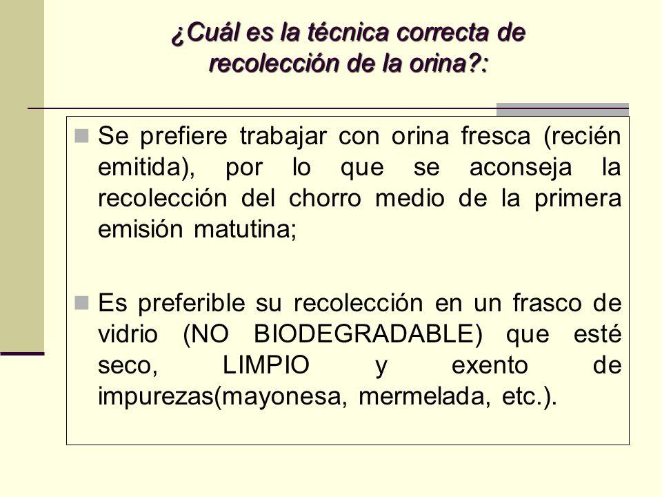 ORINA NORMAL: ¿Cuáles son las características químicas de la orina?: INVESTIGAR PRESENCIA DE: PROTEÍNAS; HEMO; GLUCOSA; CUERPOS CETÓNICOS; PIGMENTOS BILIARES; UROBILINÓGENO.
