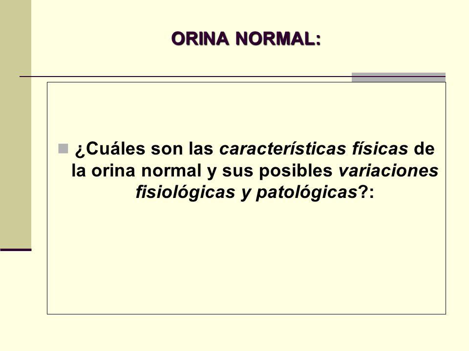 ORINA NORMAL: ¿Cuáles son las características físicas de la orina normal y sus posibles variaciones fisiológicas y patológicas?: