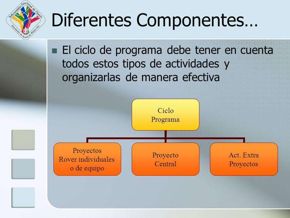 Diferentes Componentes… El ciclo de programa debe tener en cuenta todos estos tipos de actividades y organizarlas de manera efectiva Ciclo Programa Pr