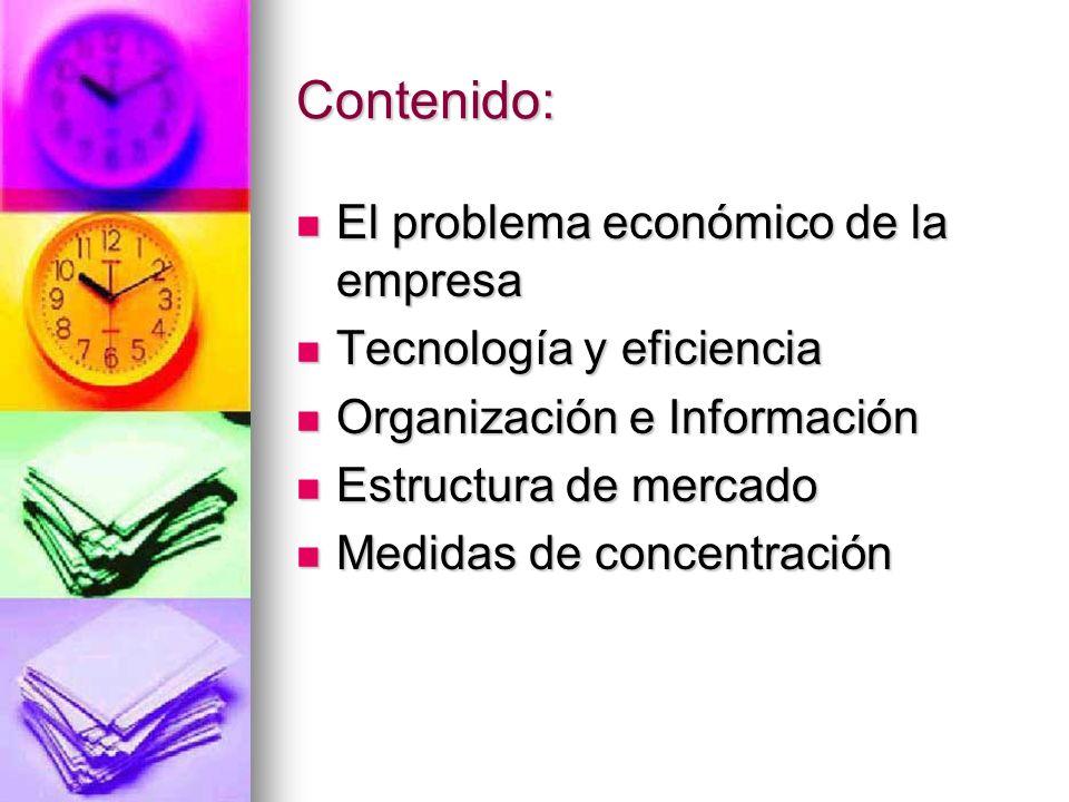 Contenido: El problema económico de la empresa El problema económico de la empresa Tecnología y eficiencia Tecnología y eficiencia Organización e Info