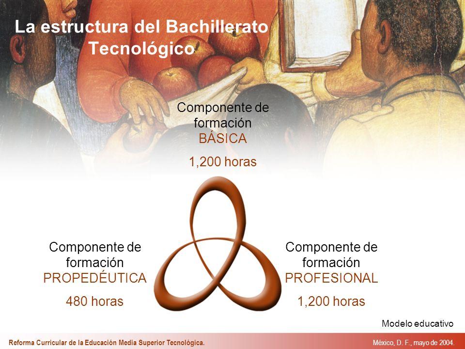 La estructura del Bachillerato Tecnológico México, D.