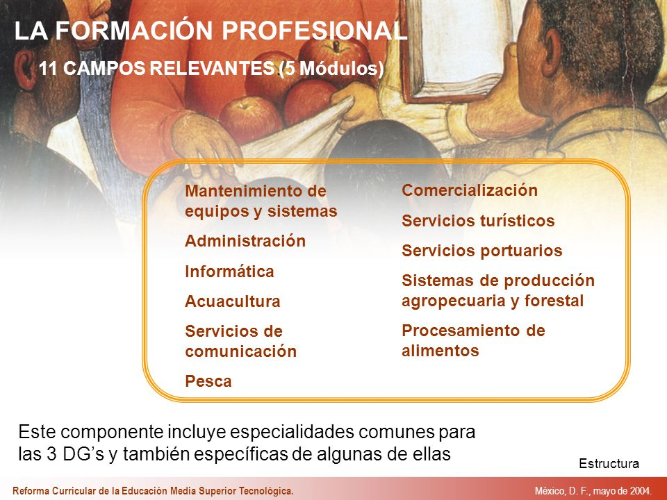 LA FORMACIÓN PROFESIONAL 11 CAMPOS RELEVANTES (5 Módulos) Este componente incluye especialidades comunes para las 3 DGs y también específicas de algunas de ellas Mantenimiento de equipos y sistemas Administración Informática Acuacultura Servicios de comunicación Pesca Comercialización Servicios turísticos Servicios portuarios Sistemas de producción agropecuaria y forestal Procesamiento de alimentos Estructura México, D.