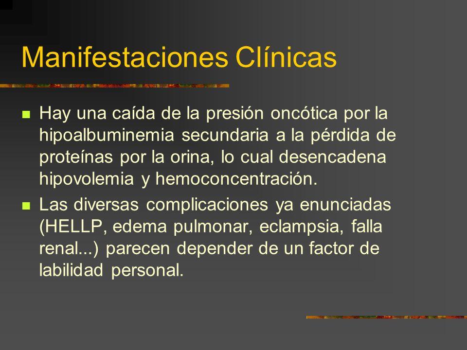 Fisiopatología Este hecho que sucede en el primer trimestre de la gestación y cuya primera manifestación clínica es la falta de la hipotensión fisioló