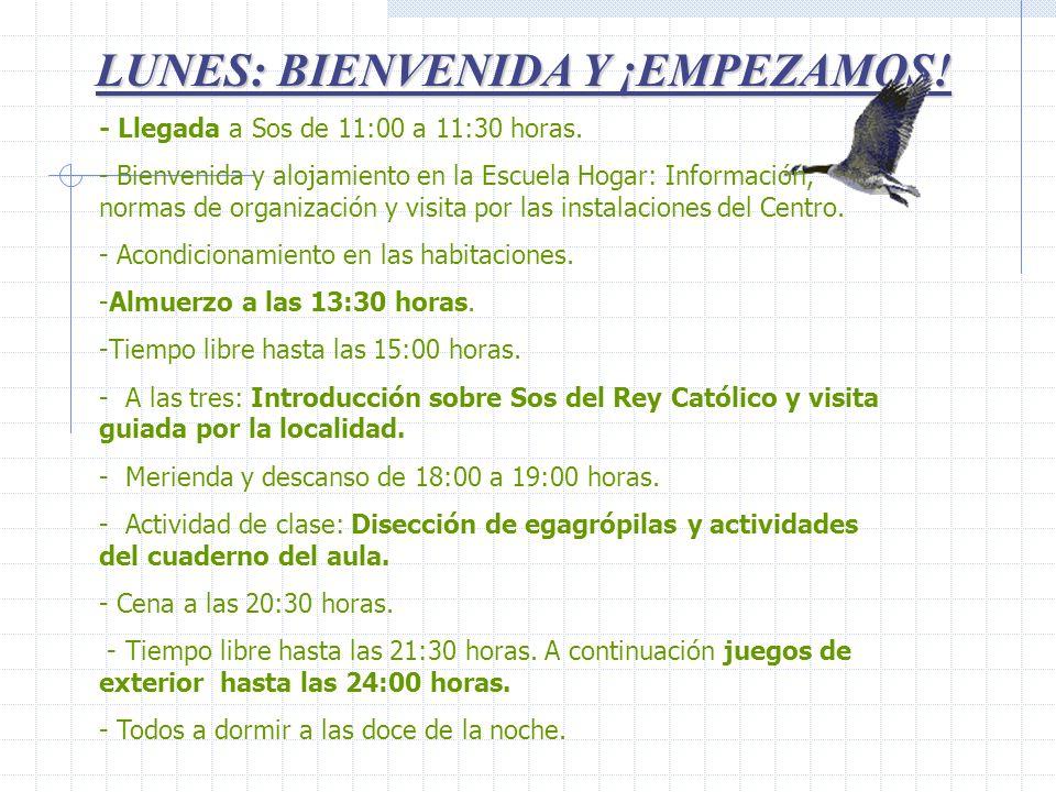 LUNES: BIENVENIDA Y ¡EMPEZAMOS! - Llegada a Sos de 11:00 a 11:30 horas. - Bienvenida y alojamiento en la Escuela Hogar: Información, normas de organiz