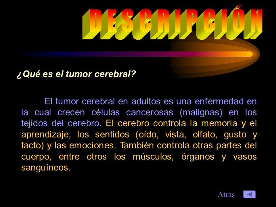 El tumor cerebral en adultos es una enfermedad en la cual crecen células cancerosas (malignas) en los tejidos del cerebro.