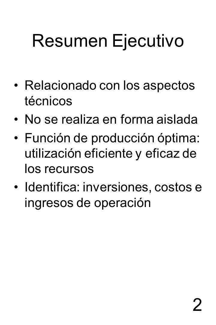 2 Resumen Ejecutivo Relacionado con los aspectos técnicos No se realiza en forma aislada Función de producción óptima: utilización eficiente y eficaz