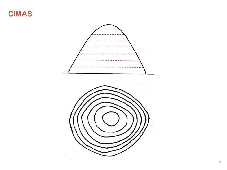 15 TÉCNICAS BÁSICAS Doblado del mapa, paralelo a las líneas de meridiano Mapa siempre orientado Marcaje con dedo pulgar Uso correcto de la brújula