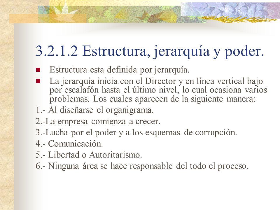 3.2.1.2 Estructura, jerarquía y poder. Estructura esta definida por jerarquía. La jerarquía inicia con el Director y en línea vertical bajo por escala