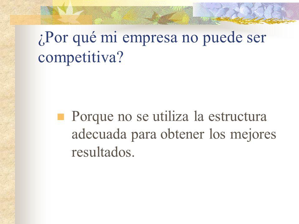 ¿Por qué mi empresa no puede ser competitiva? Porque no se utiliza la estructura adecuada para obtener los mejores resultados.